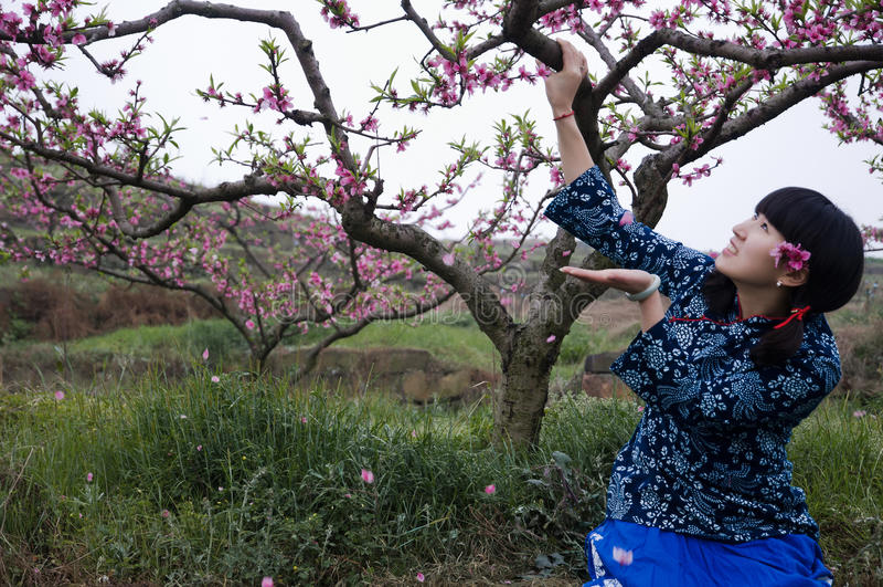 En kinesisk flicka i persikaträdgård royaltyfria bilder