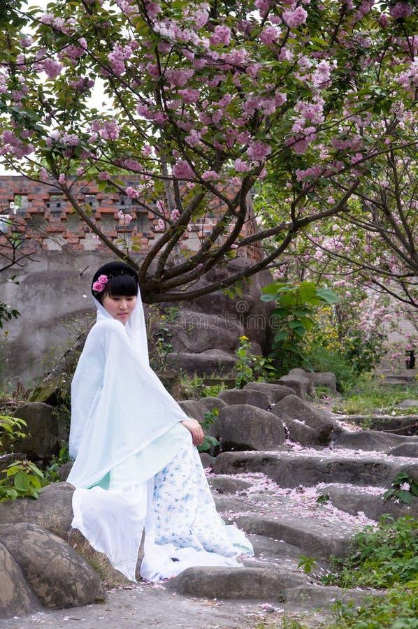 En kinesisk flicka och en körsbärsröd blomning fotografering för bildbyråer