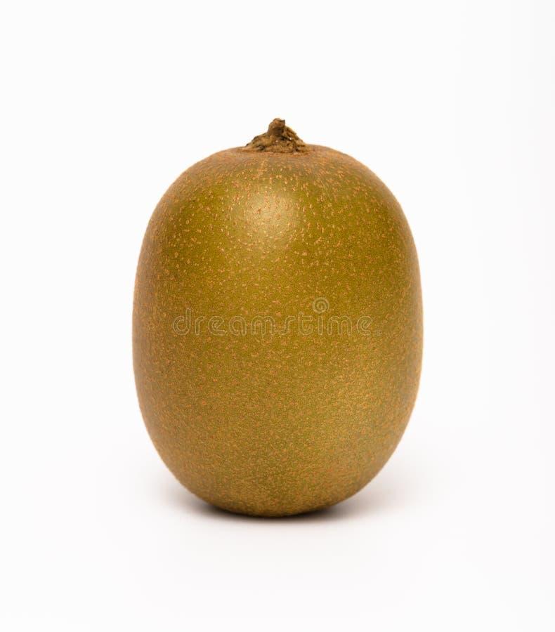 En kiwi royaltyfri foto