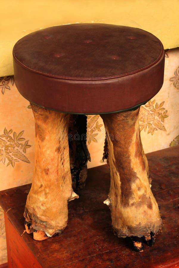 En klassisk stol som göras med det bearbetade lejonet, lägger benen på ryggen i slotten av bangalore arkivbilder