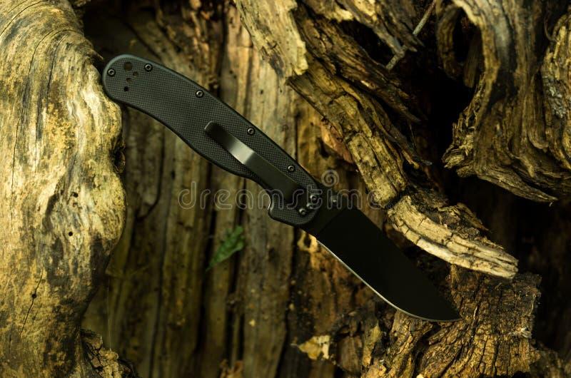 En kniv som klibbas i ett träd Svart militär kniv royaltyfria foton