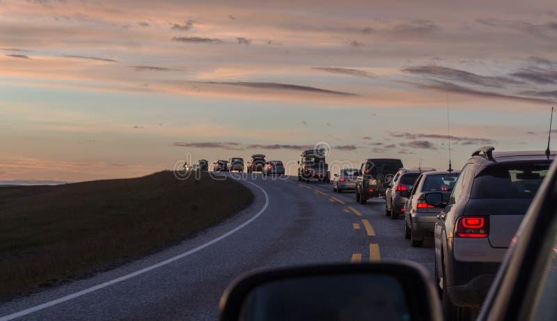 En kolonn av bilar på en slingrig väg på solnedgången, Mageroya ö, Norge royaltyfri foto