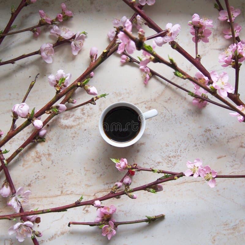 En kopp av coffe med den körsbärsröda blomningen royaltyfri foto