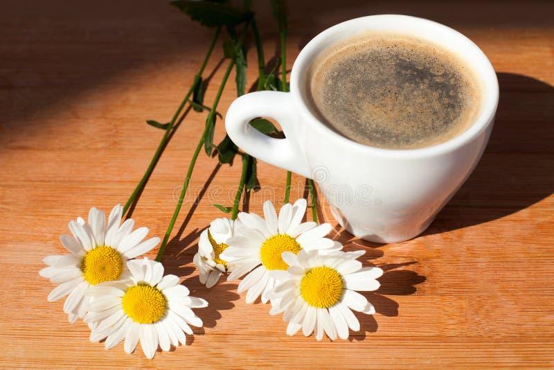 En kopp av filialen för svart kaffe av blommor för vit tusensköna på träbakgrund i ljus sunligh för morgon med skugga fotografering för bildbyråer