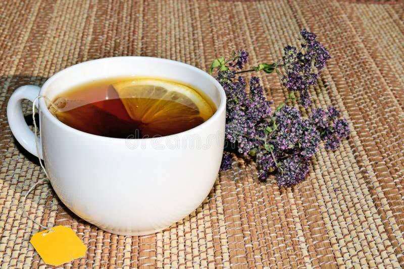 En kopp av grönt te med citronen Te med medicinska örter arkivfoto
