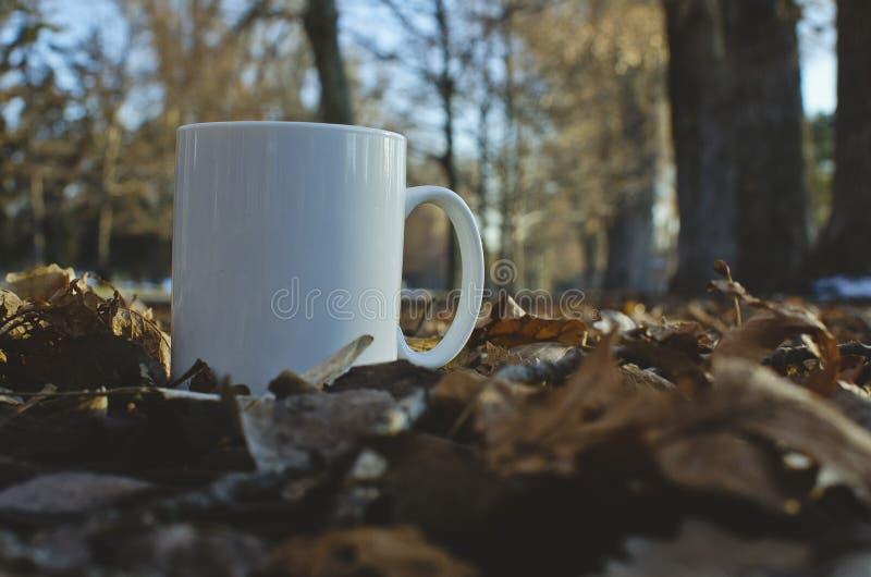 En kopp för vitt kaffe på det lövrikt parkerar gräsmatta royaltyfri bild