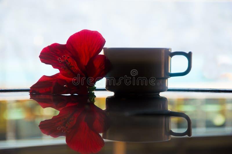 En kopp kaffe på tabellen och en magnolia blommar arkivbild