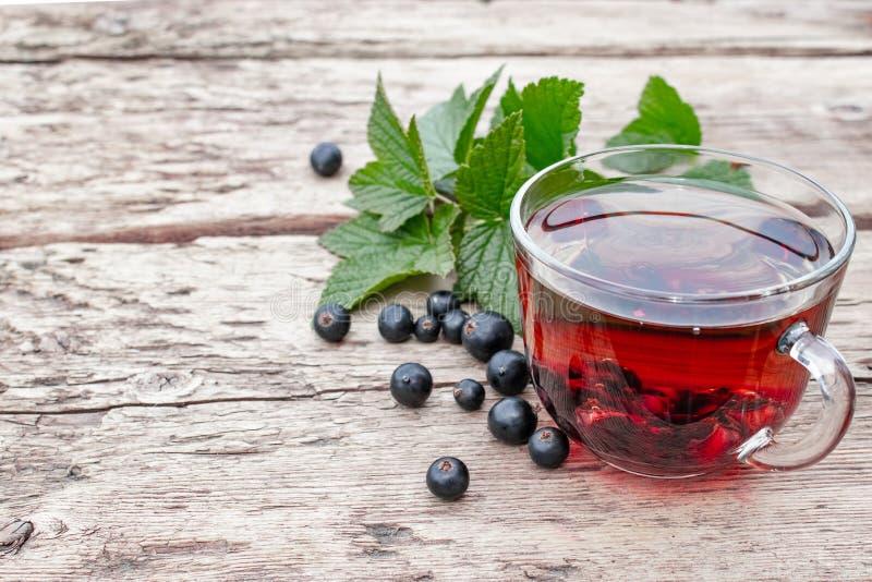 En kopp te med svarta vinbär på en trätabell bredvid gröna sidor och vinbärbär royaltyfri foto