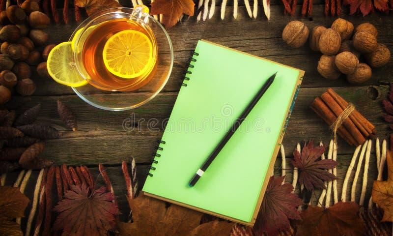 En kopp te och en anteckningsbok på bakgrunden av ett gammalt träd höstlivstid fortfarande royaltyfri fotografi