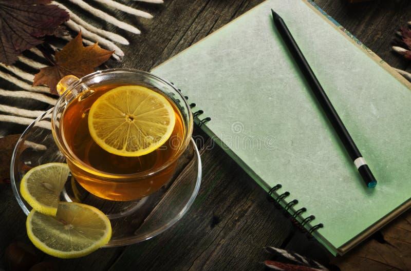 En kopp te och en anteckningsbok på bakgrunden av ett gammalt träd höstlivstid fortfarande arkivfoton