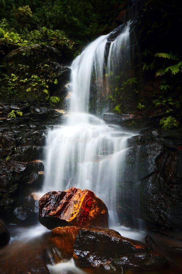 En kort vandring ska komma med dig till Edith Falls, en nätt vattenfall som lokaliseras i dalen av vattnet, Wentworth Falls Blue  royaltyfria foton