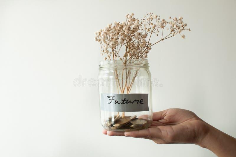 En krus är fältet med guld- mynt och den torkade blomman fotografering för bildbyråer