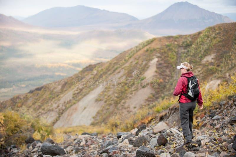 En kvinna fotvandrar i bergen av Alaska royaltyfri foto