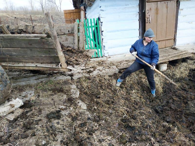 En kvinna i bygden väljer gödsel från den tidiga våren för gropen till staden arkivfoton