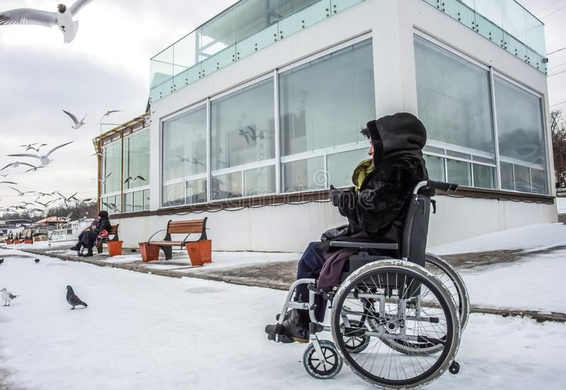 En kvinna i en rullstol matar fiskmåsar arkivfoton