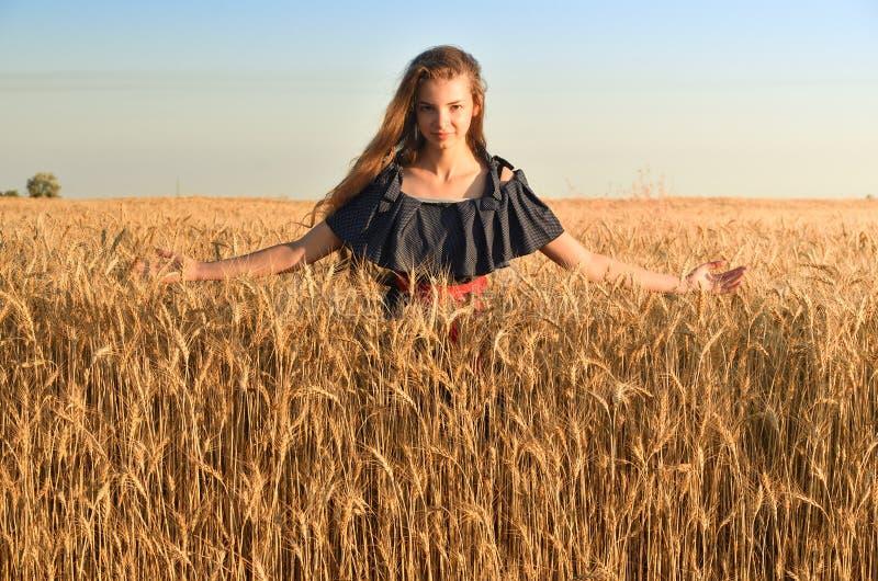 En kvinna med långt hår i en klänning av ärtaställningar bland vetet flockas i fältet arkivfoton