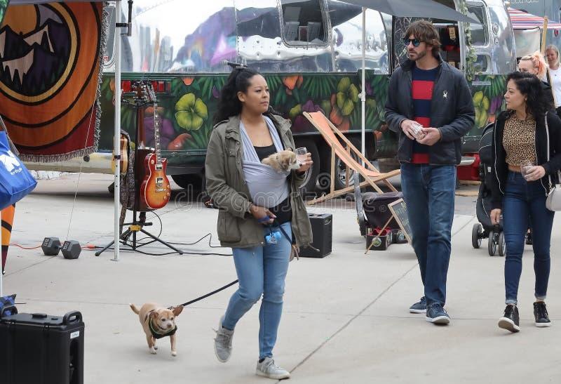 En kvinna med två hundkapplöpning, en i en bröstkorgbärare och andra på en koppel går på vårbasaren i RINO Art District royaltyfri foto