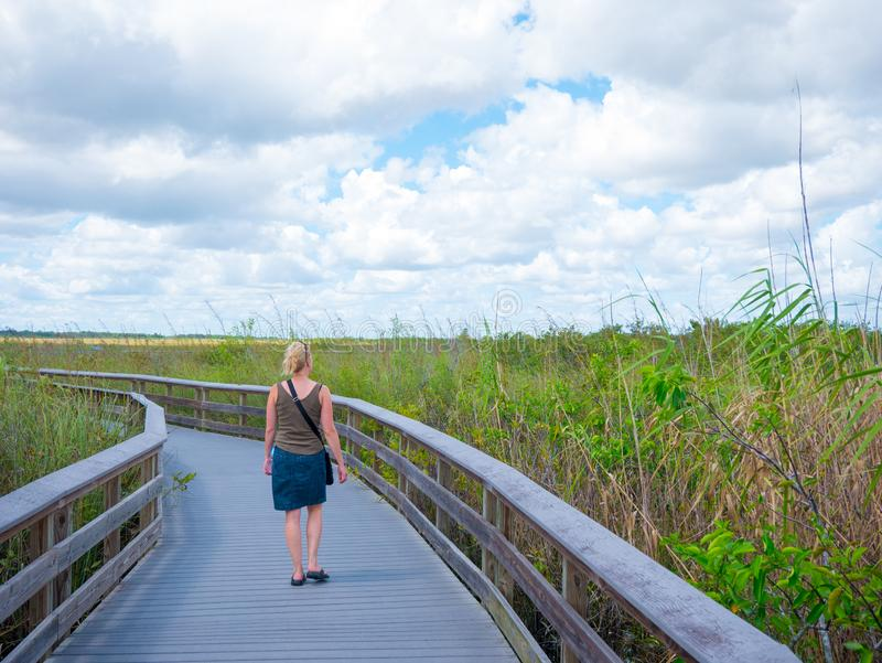 En kvinna njuter av utomhusen på en träbro mitt i en träskare som letar efter alligatorer i Florida Everglades USA royaltyfri foto