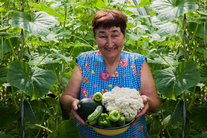 En kvinna rymmer en bunke full av nya grönsaker royaltyfri foto