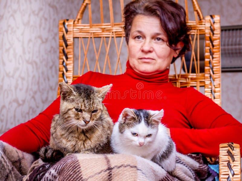 En kvinna sitter i en gungstol och rymmer två katter i hennes arms_ royaltyfria bilder