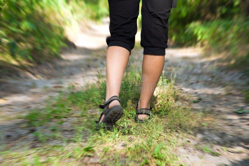 En kvinna som går på en cross-country trail arkivbilder