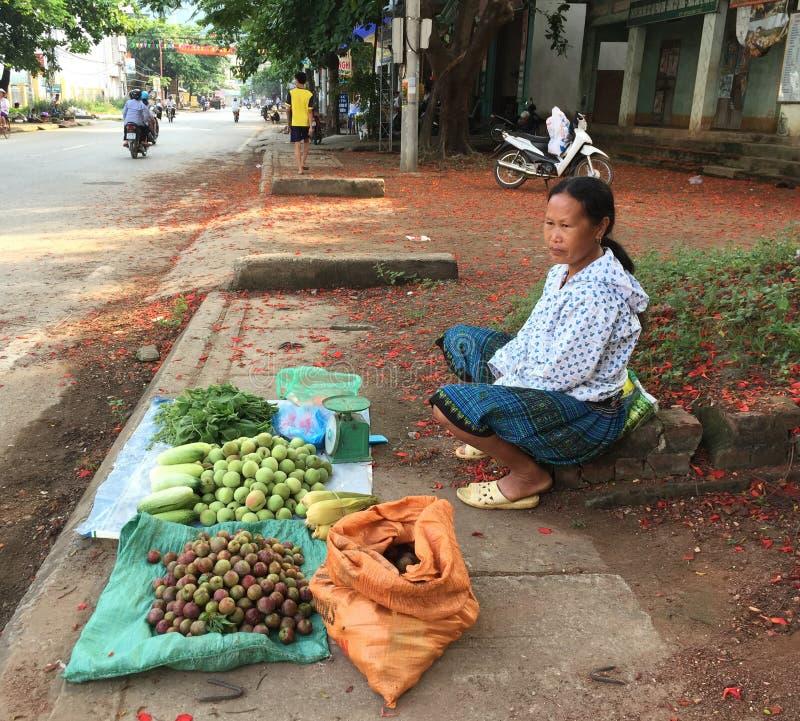 En kvinna som säljer plommoner på gatan i Mai Chau, Vietnam arkivfoto