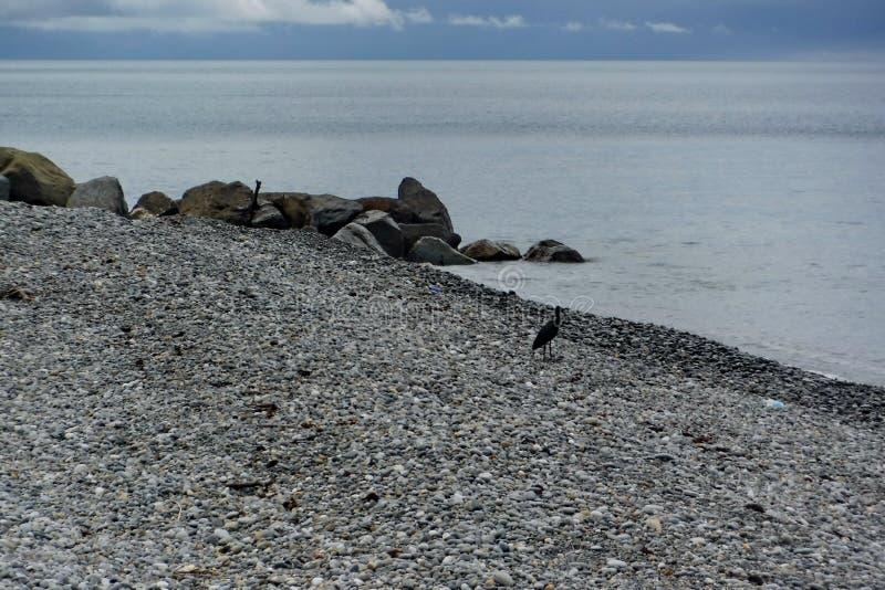 En la costa del Mar Negro antes de una tempestad de truenos fotografía de archivo
