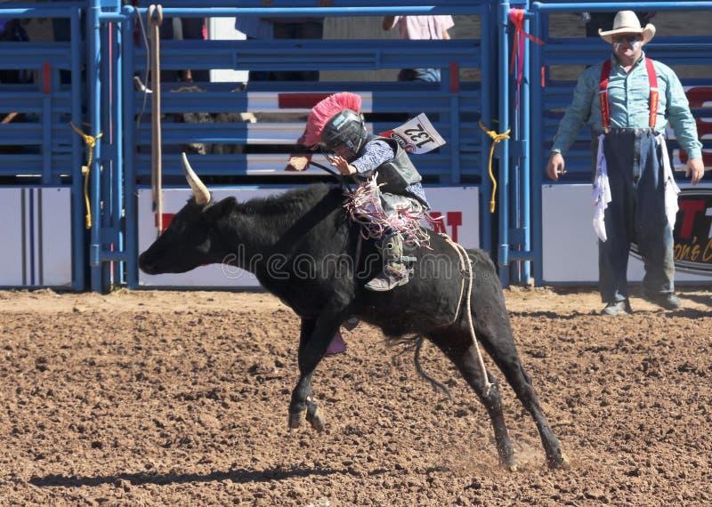 En La Fiesta De Los Vaqueros Junior Rodeo arkivfoto