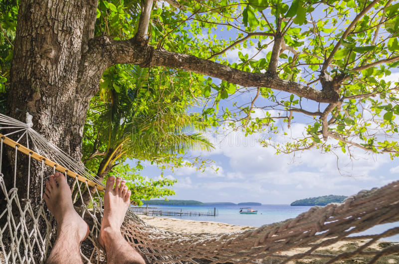 En la hamaca en la playa punto de vista foto de archivo imagen de playa poseer 47423774 - Fotos de hamacas en la playa ...