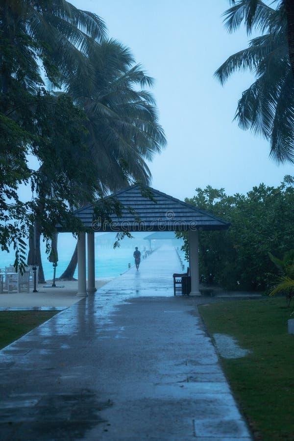 En la isla comenzó la estación de lluvias tropicales Isla en los Maldives imagen de archivo