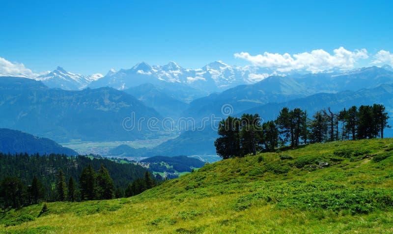En la montaña de Niederhorn fotografía de archivo libre de regalías