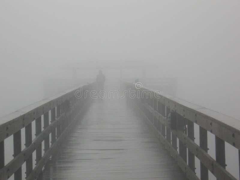 En la niebla foto de archivo