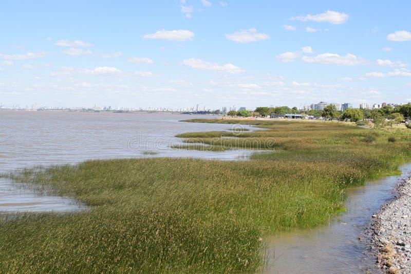 En la orilla del río en el parque foto de archivo