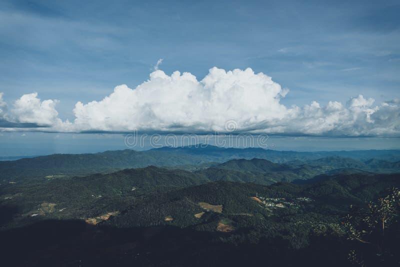 En la selva tropical de la niebla y, oscuridad fotografía de archivo libre de regalías