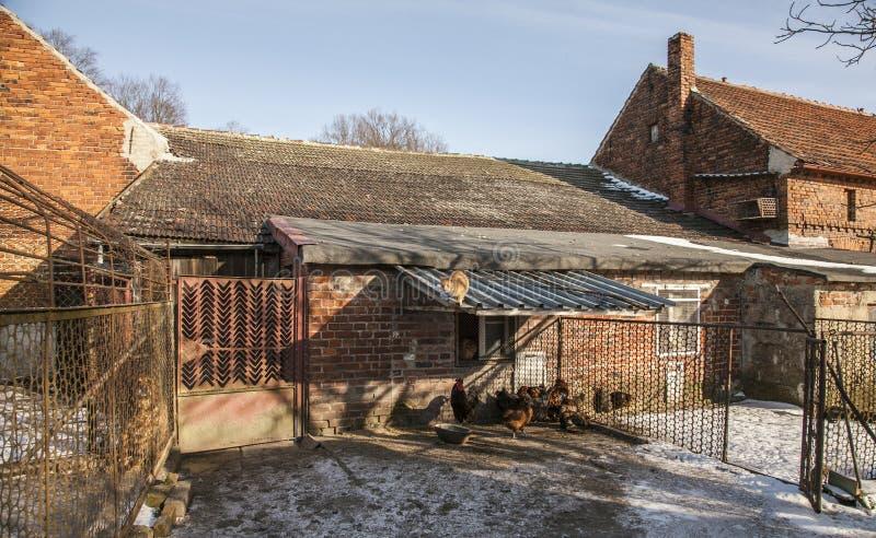 En ladugårdgård; Polen royaltyfria foton