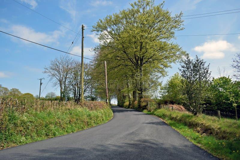 En landsväg fodrade vid gräs- banker och träd med en blå himmel och fördunklar bakgrund royaltyfri foto