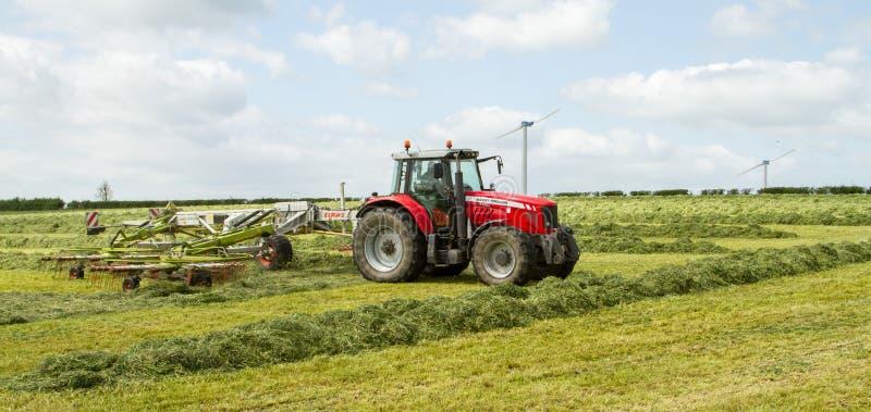 En lantgårdtraktor som krattar höensilage i fält arkivbilder