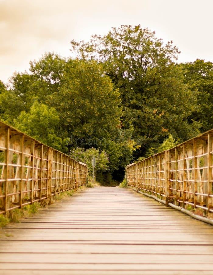 En lantlig bro royaltyfria foton