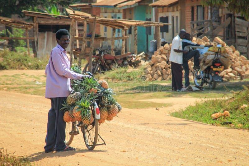 En lantlig mobil marknad - en försäljare säljer nya och mogna gula ananors som är raka från cykeln royaltyfri bild
