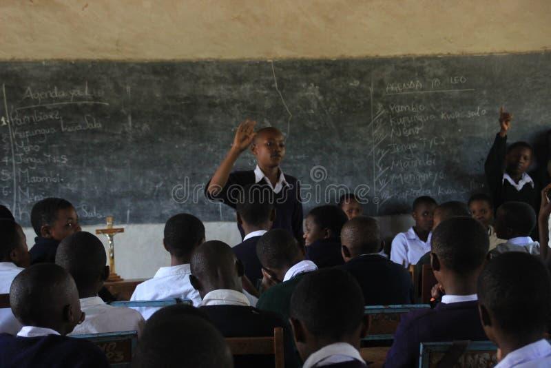 En lantlig skola i förorten av Arusha, afrikanska studenter i kemigrupper royaltyfria bilder