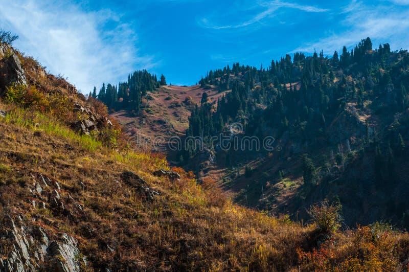 Download En las montañas foto de archivo. Imagen de valle, hierba - 44852868