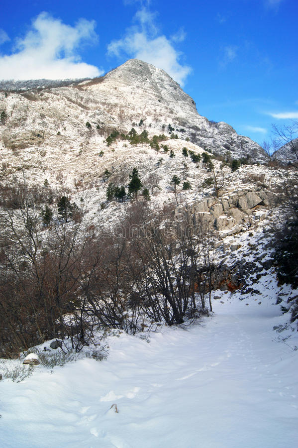 En las montañas foto de archivo