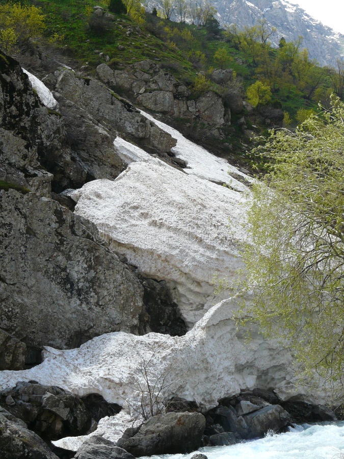 En lavin i floden av Siam royaltyfri bild