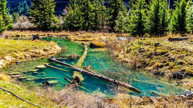 En laxlekkanal p? Cayoosh liten vik i British Columbia, Kanada arkivfoton