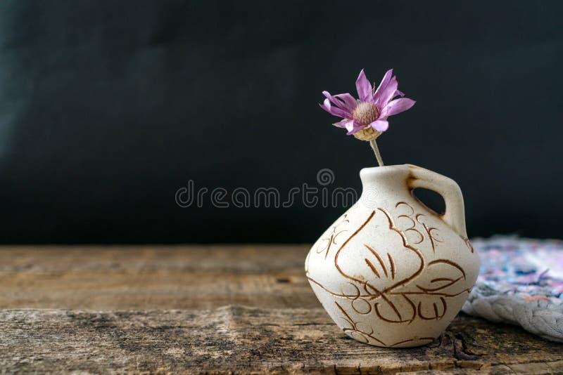 En lila blomma Xeranthemum på leravasen på trätextur tillbaka fotografering för bildbyråer
