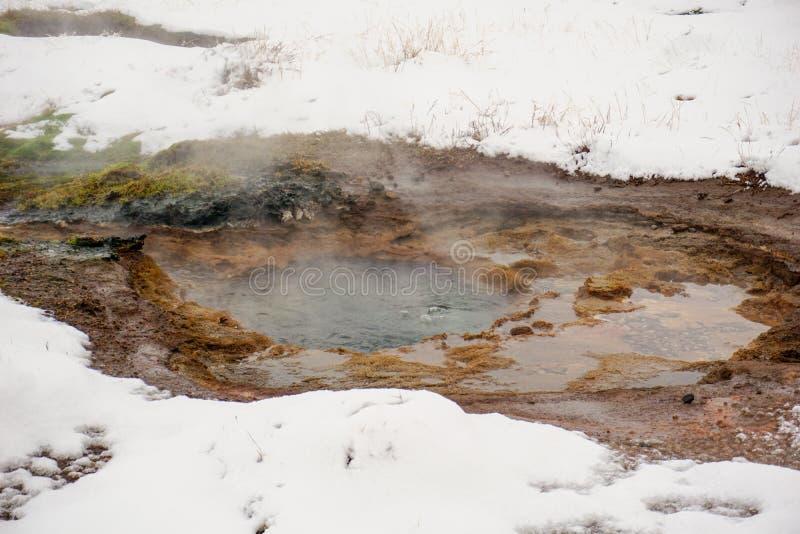 En lilla Geysir i denna snö täckte geotermiska AreaA lilla Geysir med att ånga vatten i detta dolda geotermiska område för snö arkivfoton