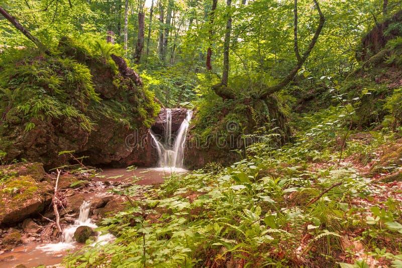 En liten bergflod som är längst ner av en djup klyfta, en liten vattenfall arkivbilder