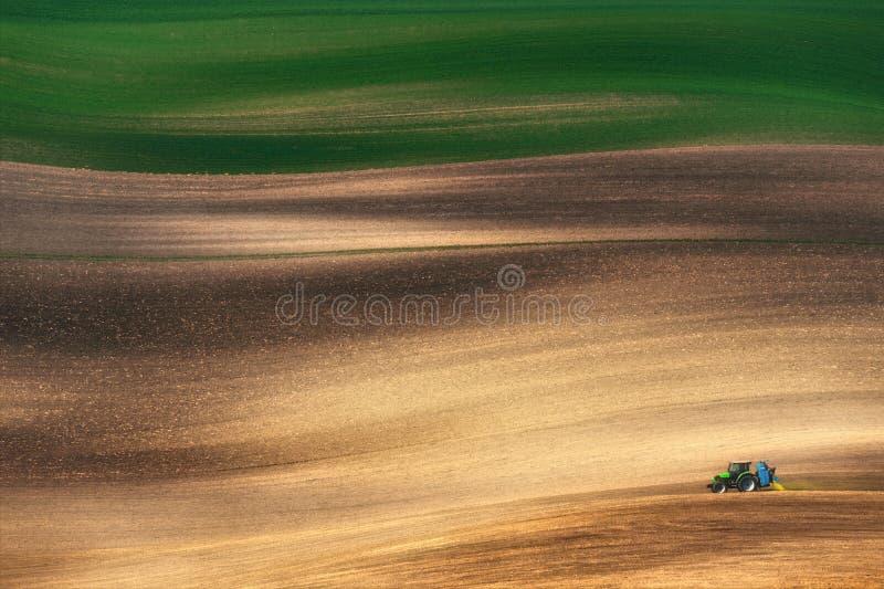 En liten blå traktor odlar den stora våren färgat fält royaltyfria bilder
