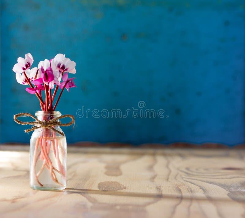 En liten bukett av blommor av cyklamen i en glasflaska på en trätabell En torr frukost i en sked arkivfoton