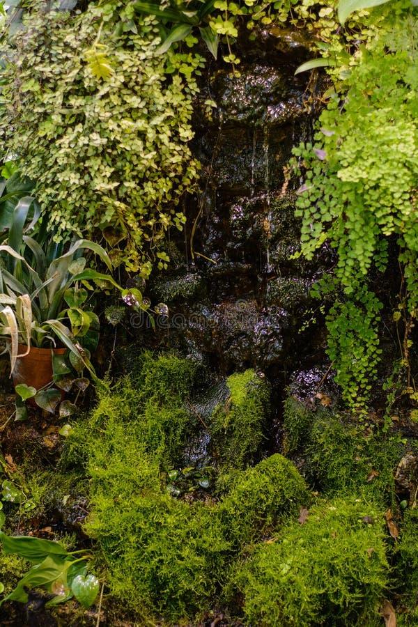 En liten dekorativ vattenfallbakgrund arkivbilder